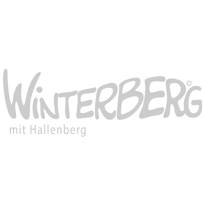 logo city marketing winterberg